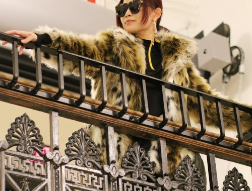 Faux Fur Leopard Coat, Ace Hotel Pittsburgh, Karen Walker sunglasses