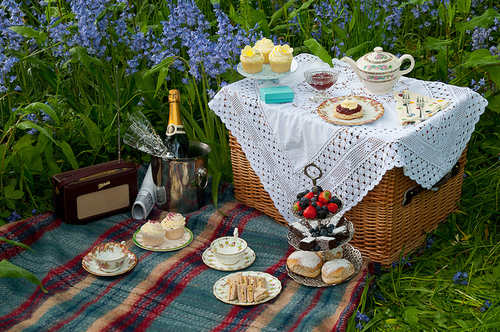 Picnicking with Panache  StyleAspirations
