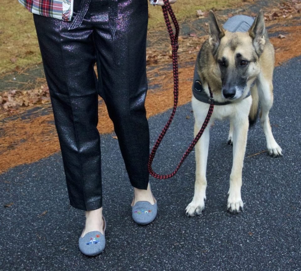 german shepherd, holiday outfit, plaid puffer vest