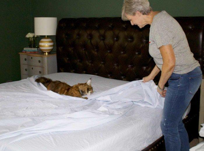 west elm organic bedding, j.crew denim and graphic tee