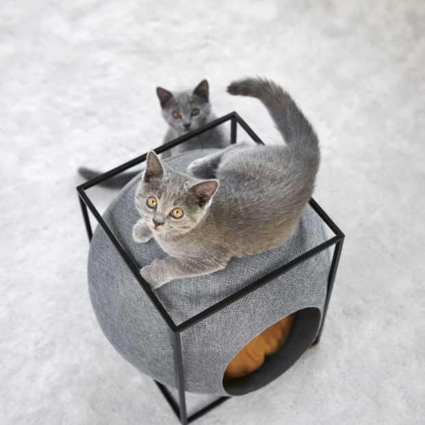 Stijlvolle manden voor je kat van Meyou