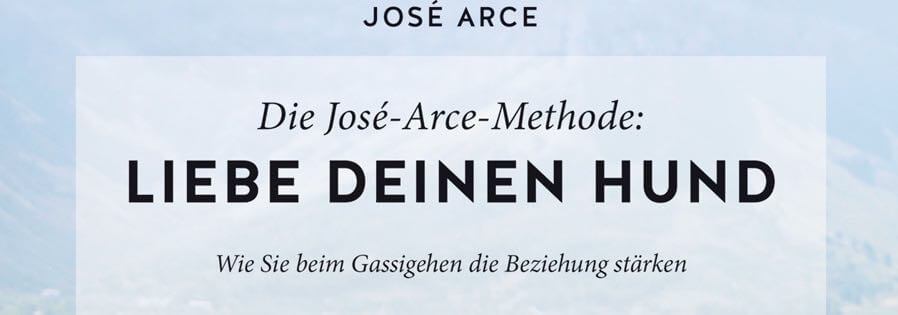 Die José-Arce-Methode: Als Team funktionieren