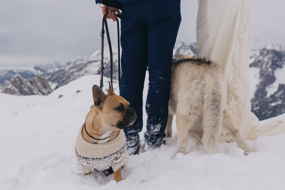 winter-mountain-wedding-hafelekar-maria-luise-bauer-photography-wedding-with-dogs-22