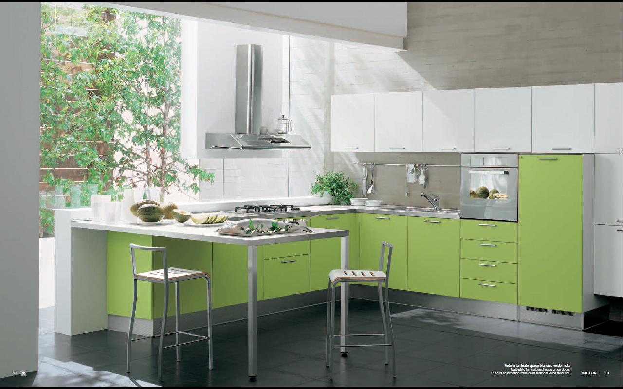 Modern Green Madison Kitchen Interior Design