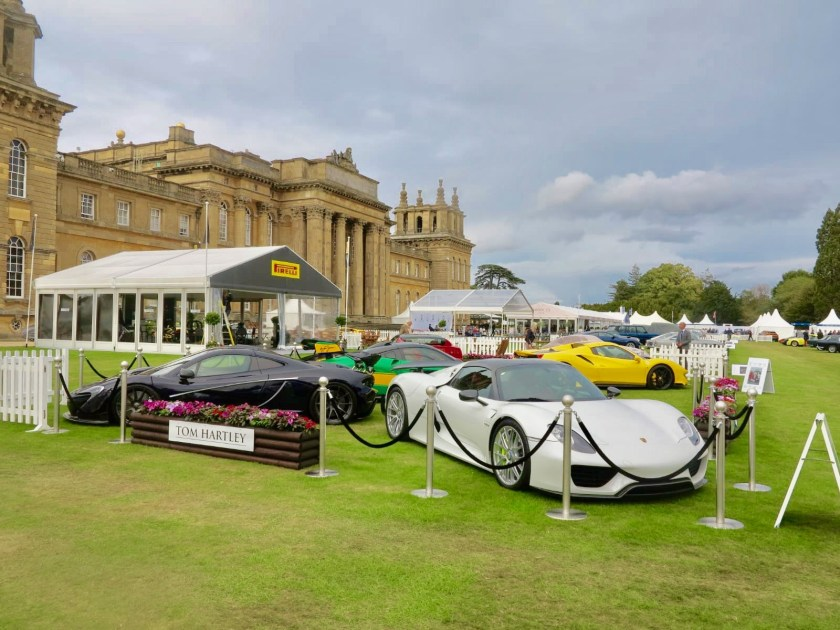 The Glamorous Lifestyle and Supercars5