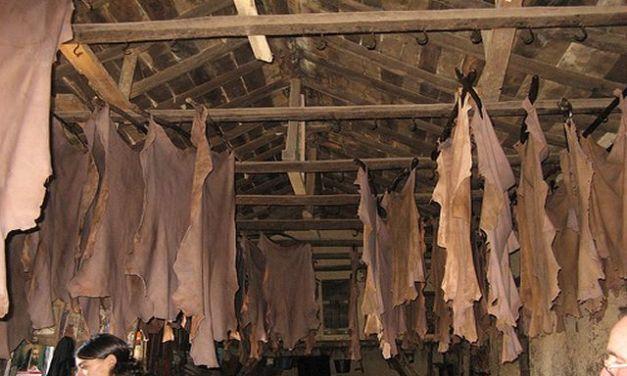 Ciatec desarrolla novedoso sistema para secar el cuero