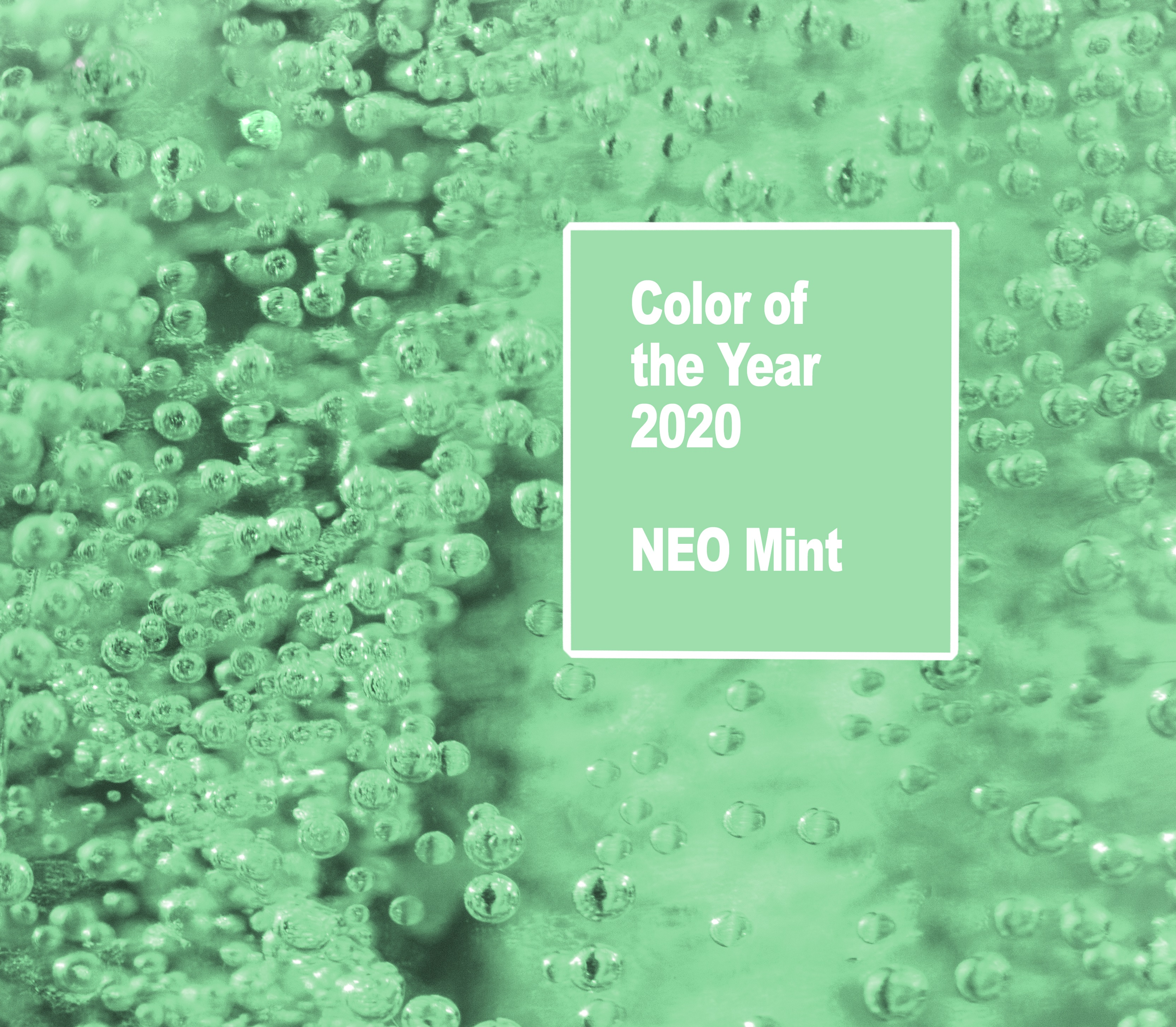 Freshen Up Homes with Neo Mint  Style Studio