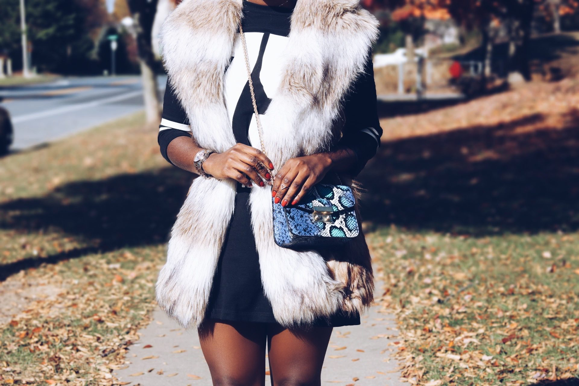 style-synospis-fur-vest-style
