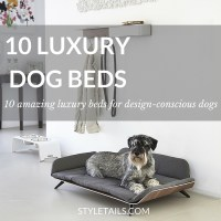 TRENDS | 10 of the Most Amazing Luxury Dog Beds