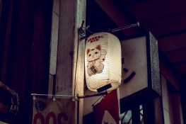 My Japan Trip Changed Me: A Photographic Japan Guide PART I 4