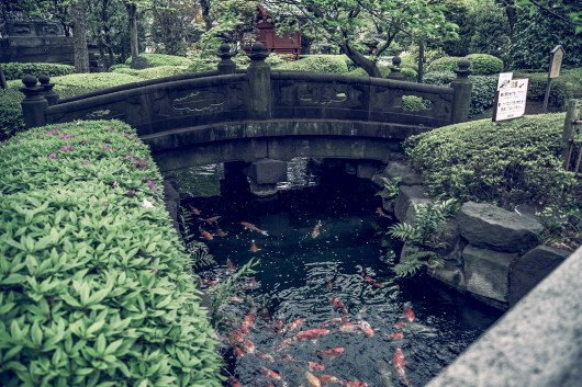 My Japan Trip Changed Me: A Photographic Japan Guide PART I 10