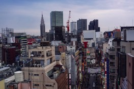 My Japan Trip Changed Me: A Photographic Japan Guide 4