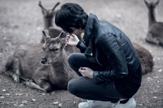 Have You Seen This Japanese Deer City? A Photo Diary of Nara, Osaka and Kyoto 10
