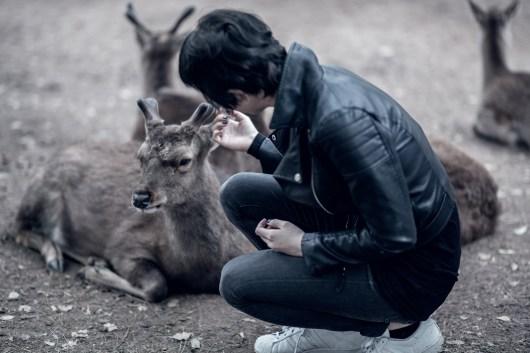 Have You Seen This Japanese Deer City? A Photo Diary of Nara, Osaka and Kyoto 10