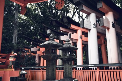 Have You Seen This Japanese Deer City? A Photo Diary of Nara, Osaka (and an onsen experience) and Kyoto 1