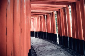 Have You Seen This Japanese Deer City? A Photo Diary of Nara, Osaka (and an onsen experience) and Kyoto 5