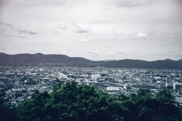 Have You Seen This Japanese Deer City? A Photo Diary of Nara, Osaka (and an onsen experience) and Kyoto 15