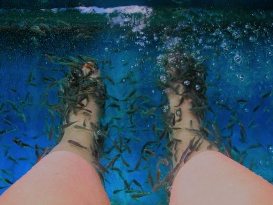 Water Bom Park, Bali   fish spa