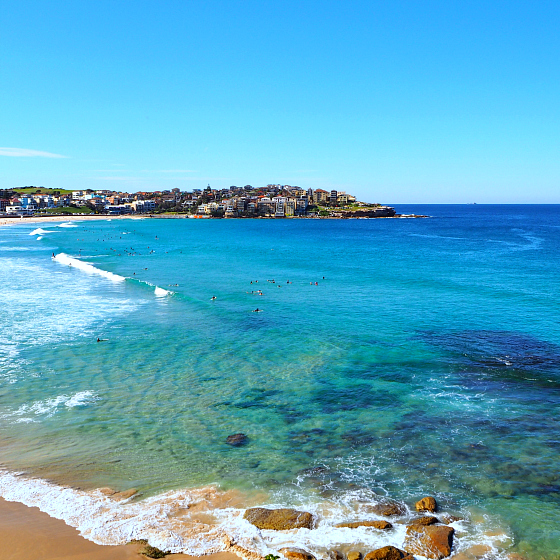 Surfing Bondi Beach | 10 things to do in Bondi