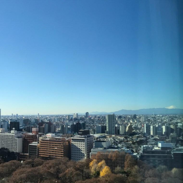 Mt Fuji from Hyatt Regency Tokyo, Japan | 48 hours in Tokyo