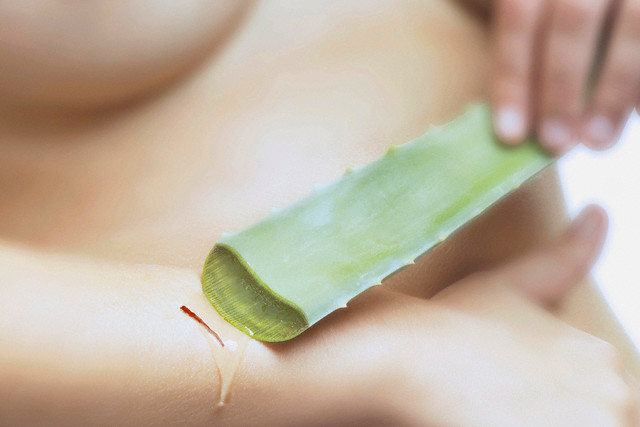 How Does Drinking Aloe Vera Juice Help You Lose Weight
