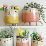 Indoor Plant Pots Novelty Designs To Make Your Plants Stand Out