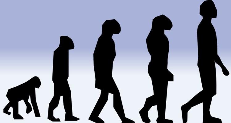 Selezione Naturale Charles Darwin