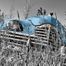 Mondo dell'automotive