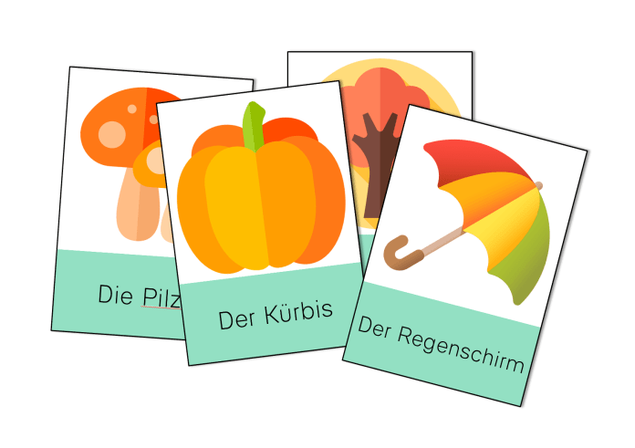 Flash cards allemand