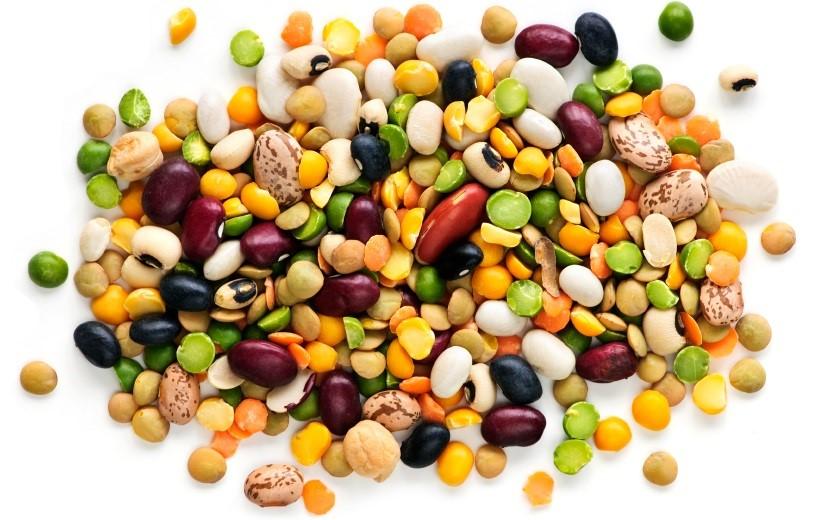 Proteinrika bönor