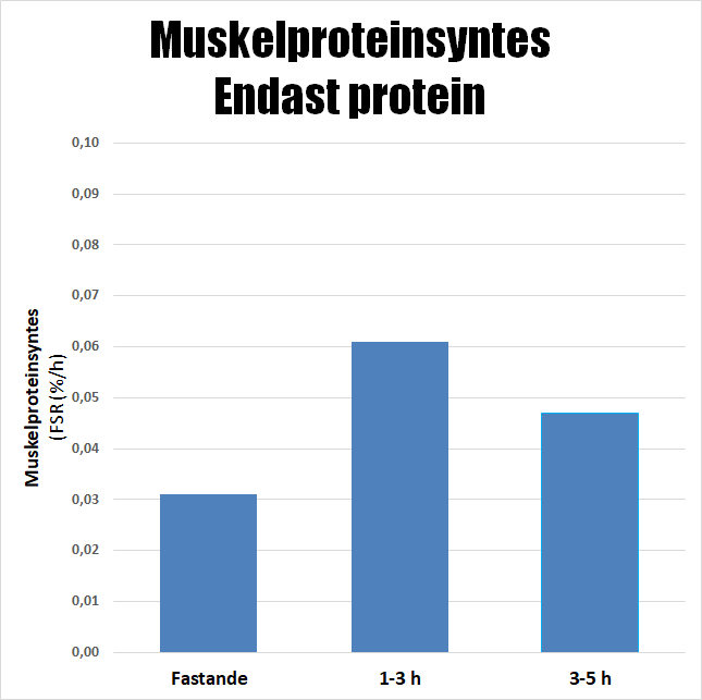 Muskelproteinsyntes enbart protein