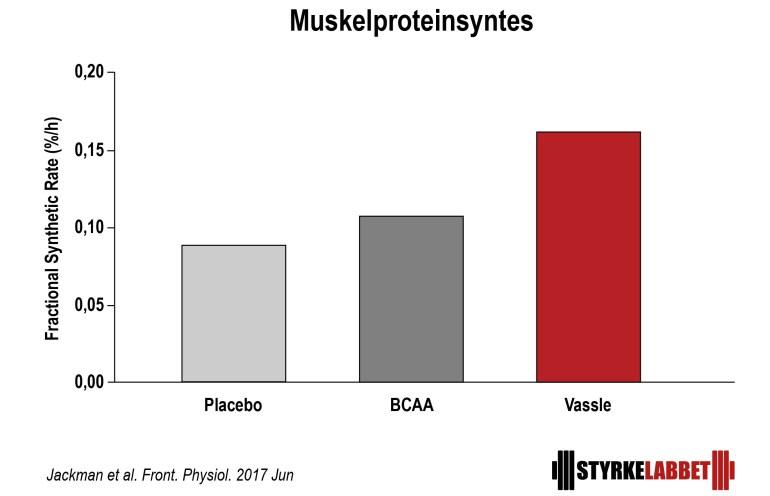 aminosyror innan träning