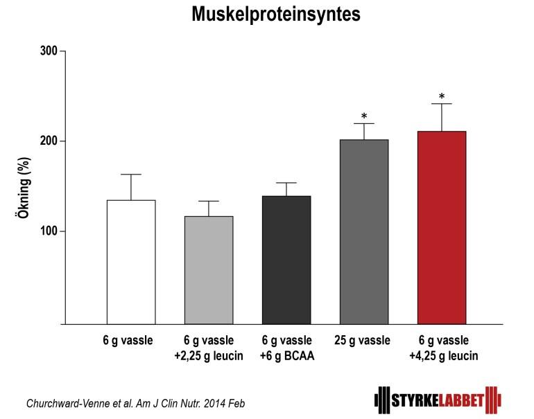 bcaa istället för proteinpulver