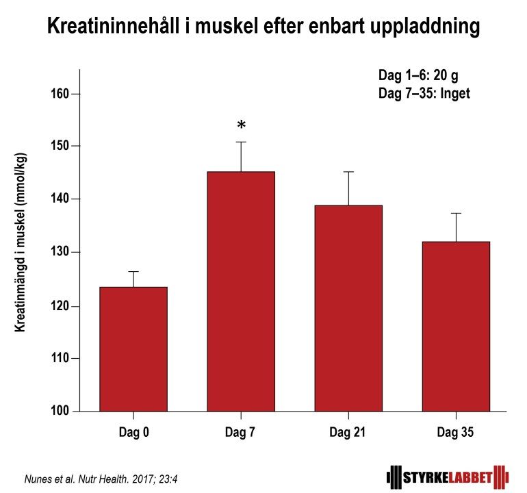 Kreatin dosering 20 g i sex dagar