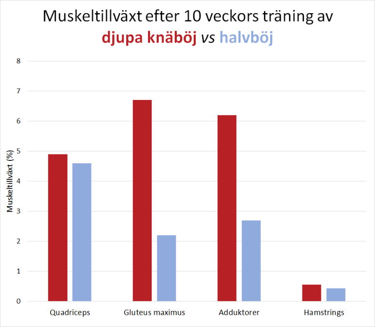 Hela eller halva repetitioner: vilken metod bygger muskler bäst?
