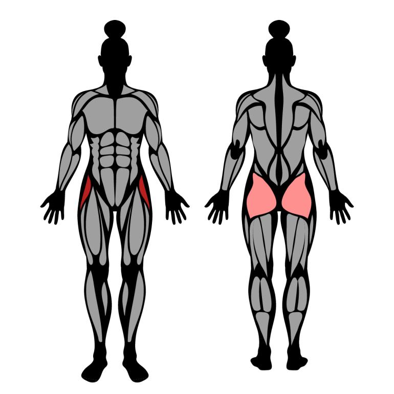 Muskler som tränas av höftabduktion mot band
