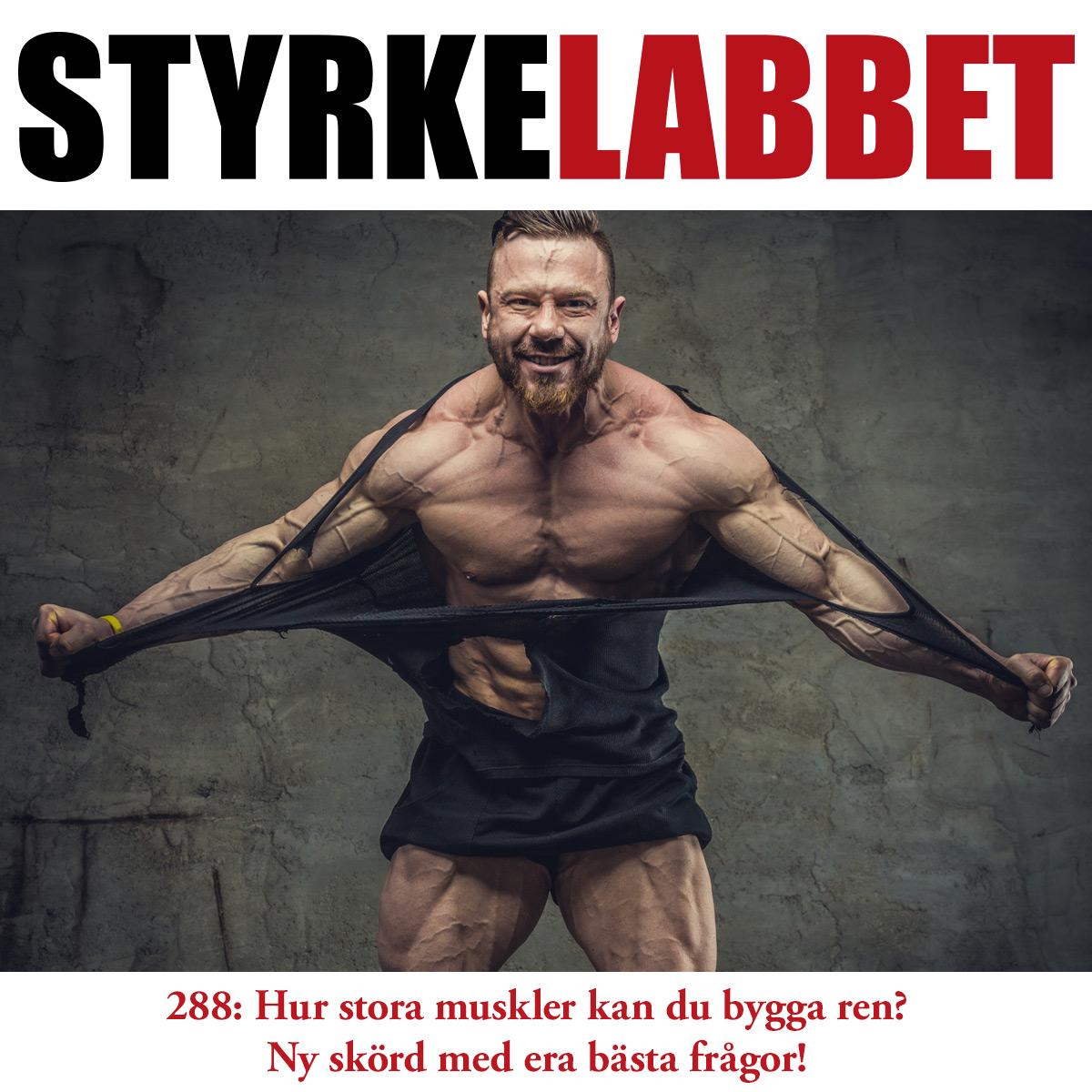 Styrkelabbet avsnitt 288: Hur stora muskler kan du bygga ren? Ny skörd med era bästa frågor!