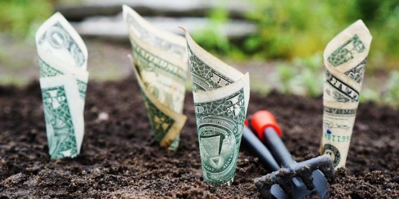 Dinheiro sendo plantado no chão com o intuito que ele gere frutos, chamados de juros compostos e que levarão qualquer pessoa à riqueza.