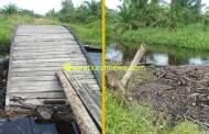 Baru 3 Bulan Dibangun oleh PT Arara Abadi, Jembatan Sungai Ara Roboh