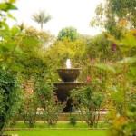 Reapertura biosegura también en el Jardín Botánico de Bogotá