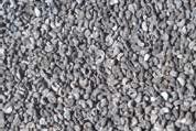 rue seeds