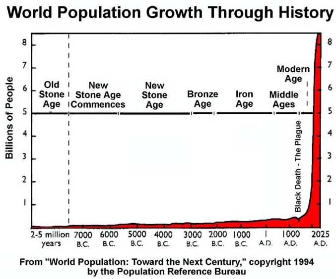 Image result for human population graph