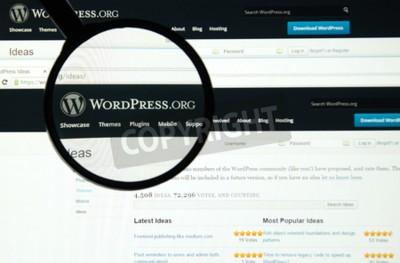 Los 10 plugins más relevantes en WordPress