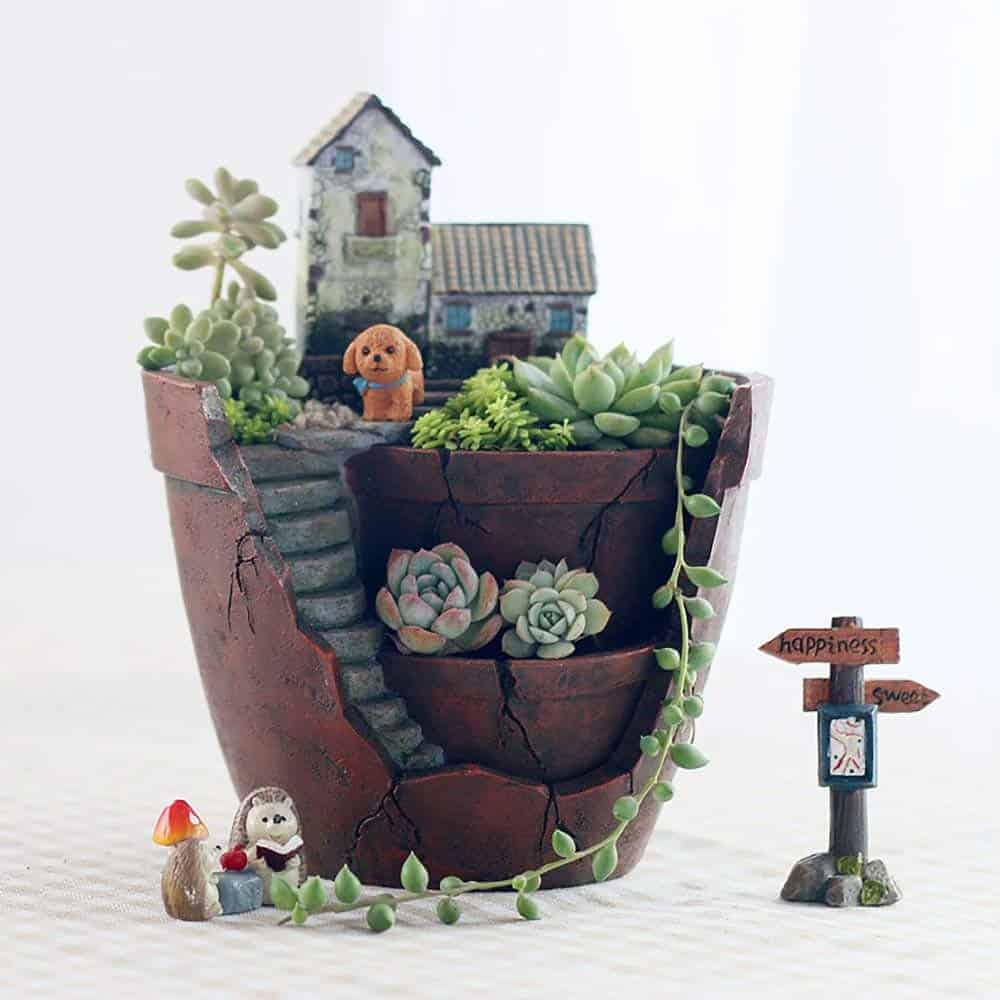 Make a Fairy Garden with Succulents and Cacti