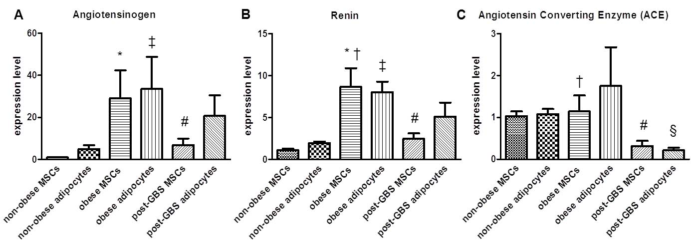 Effect of Obesity On Adipogenic Differentiation of Adipose