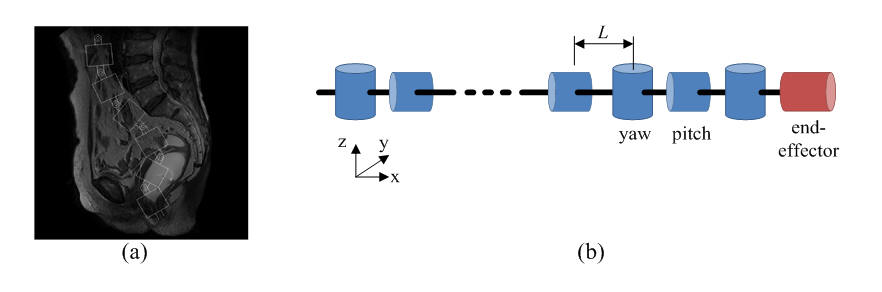 Fig.1 Study overview (a) target algorithm and (b) simulated robot