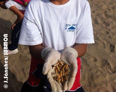 Limpieza de playa en Estartit