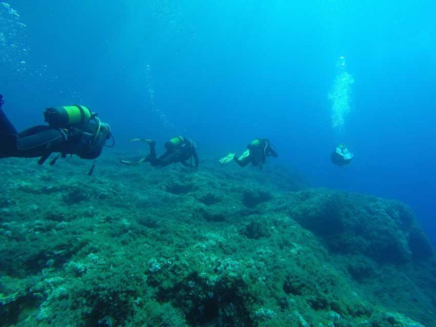 Reducir el impacto del buceo en los ecosistemas marinos