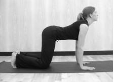 Yoga Pose Cat_stretch