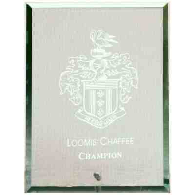 Standing Glass Plaque GL306